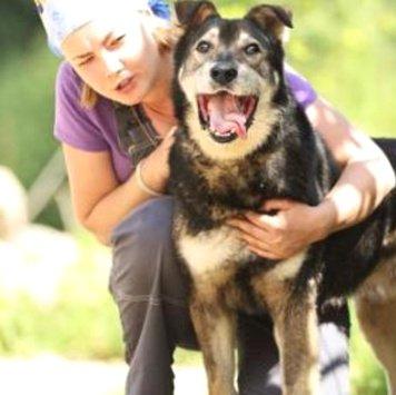 Кузьмич - Собаки в добрые руки
