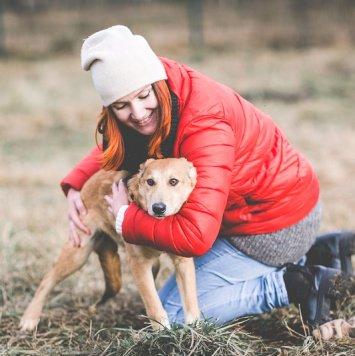 Миса - Собаки в добрые руки