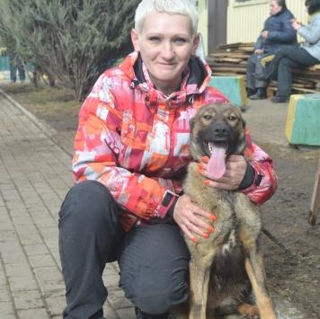 Лапа - Собаки в добрые руки
