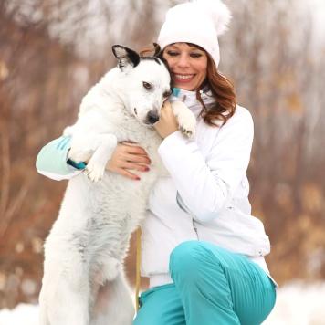 Бартон - Собаки в добрые руки