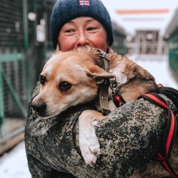 Киса - Собаки в добрые руки