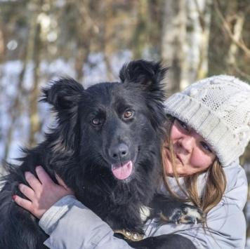 Руша - Найденные собаки