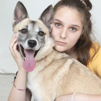 Семен - Собаки в добрые руки