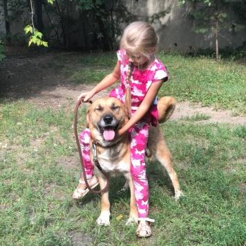 Добряк Грэм - Собаки в добрые руки