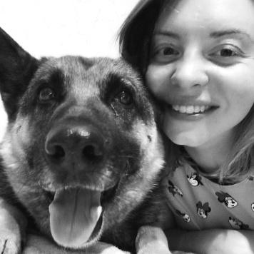 Терра - Найденные собаки