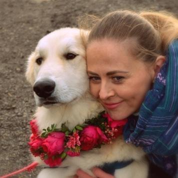 Пончик - Собаки в добрые руки