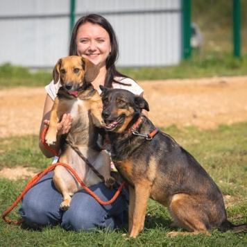 Бэлла и Лютта - Собаки в добрые руки