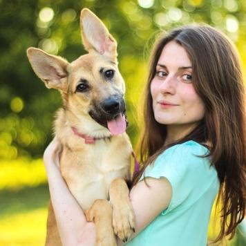 Сирень - Собаки в добрые руки