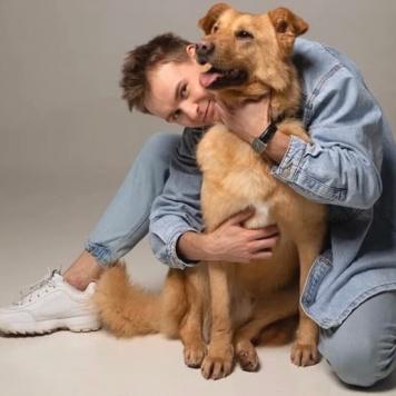 Уил - Собаки в добрые руки