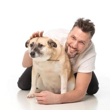 Ульяша - Собаки в добрые руки