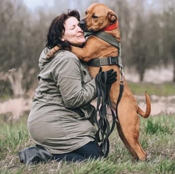 Тритон - Собаки в добрые руки