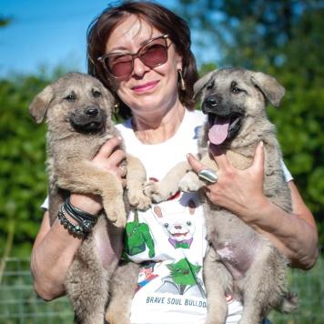 Чуки и Чудик - Собаки в добрые руки