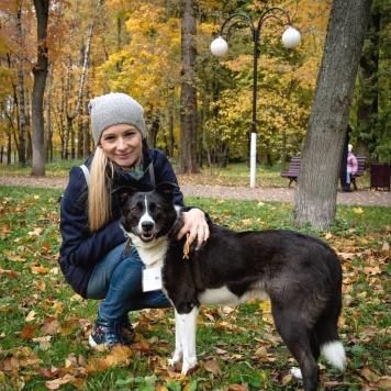 Ани - Собаки в добрые руки