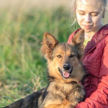Рыся - Собаки в добрые руки
