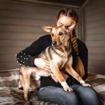Снуп - Собаки в добрые руки