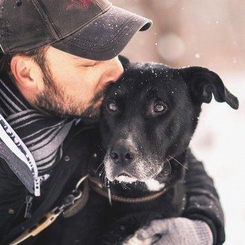 Виконт - Собаки в добрые руки