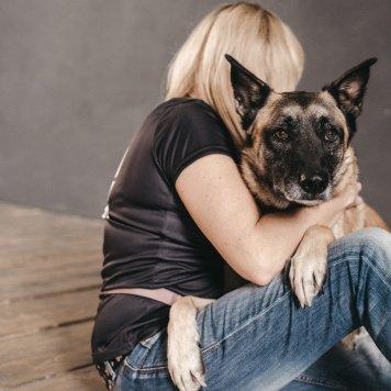 Джонни - Собаки в добрые руки