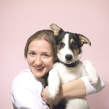 Луи - Собаки в добрые руки