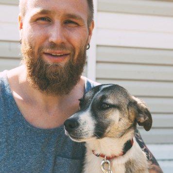 Дейзи - Собаки в добрые руки