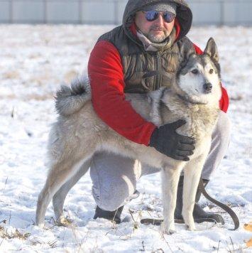 Юрза - Собаки в добрые руки