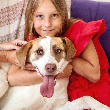 Лакоста - Собаки в добрые руки