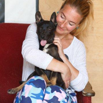 Агнетта - Собаки в добрые руки
