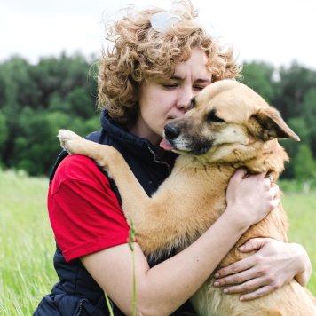 Лока - Собаки в добрые руки