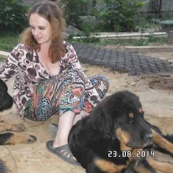 ТиМас - Собаки в добрые руки