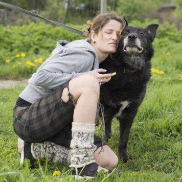 Измир - Собаки в добрые руки