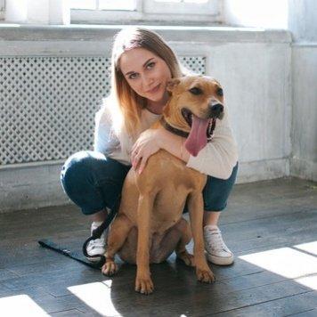 Елка - Собаки в добрые руки