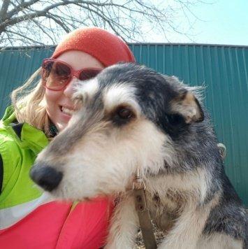 Бригита - Собаки в добрые руки