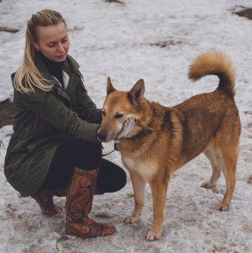 Фин - Собаки в добрые руки
