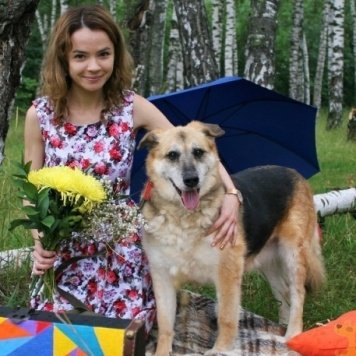 Ангара - Собаки в добрые руки