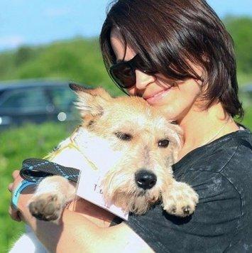 Тино - Собаки в добрые руки