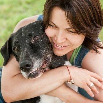 Степаныч - Собаки в добрые руки