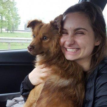Мэллер - Собаки в добрые руки