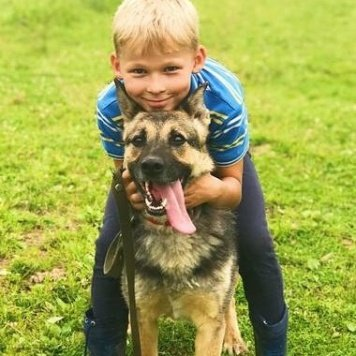 Инга - Собаки в добрые руки